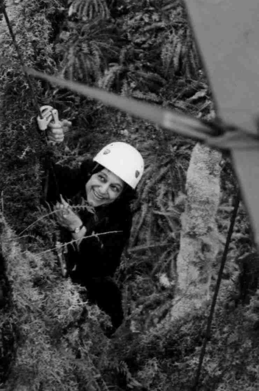 nalini climbing tree in Washington State_steve rentmeester