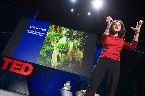 nalini giving 2009 TED talk_TED